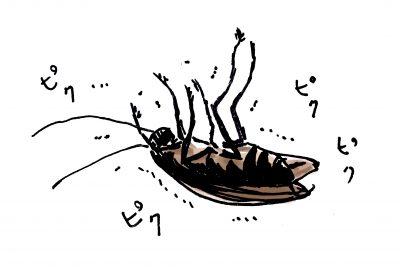 ゴキブリの殺し方と死骸の後始末!苦手意識をなくすおすすめの方法!